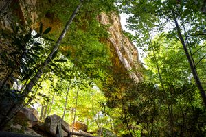 Natural Bridge in Kentucky from below