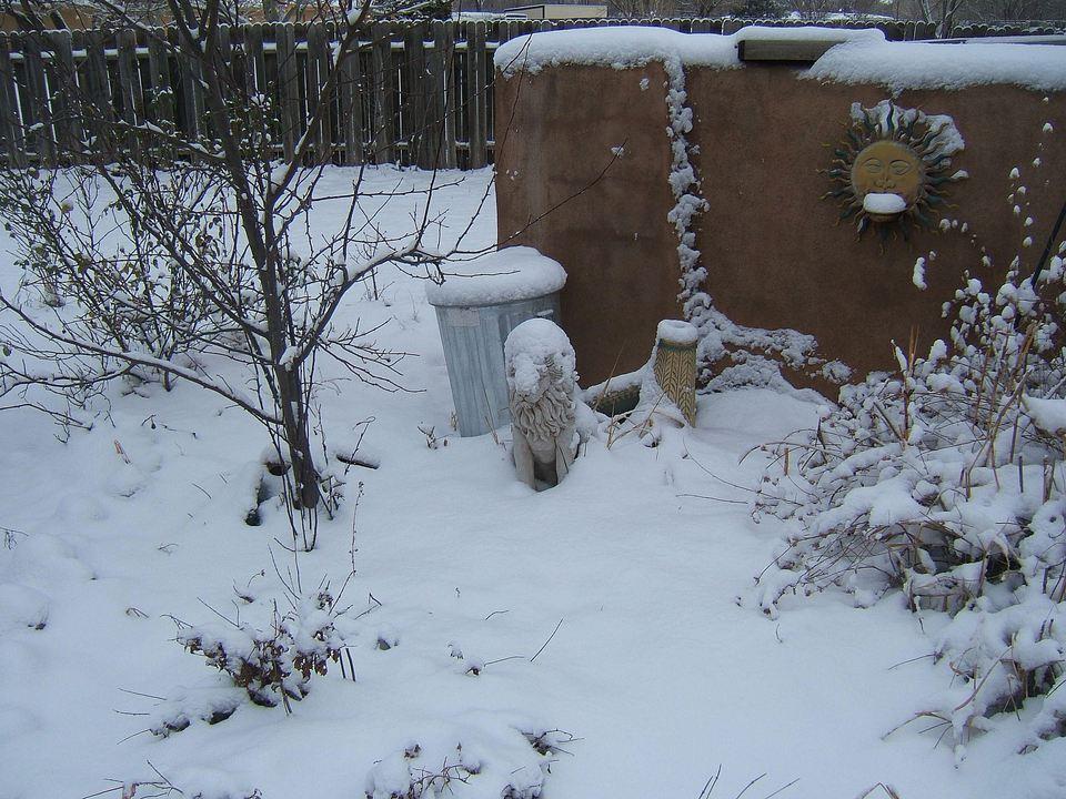 SnowPeralta.jpg
