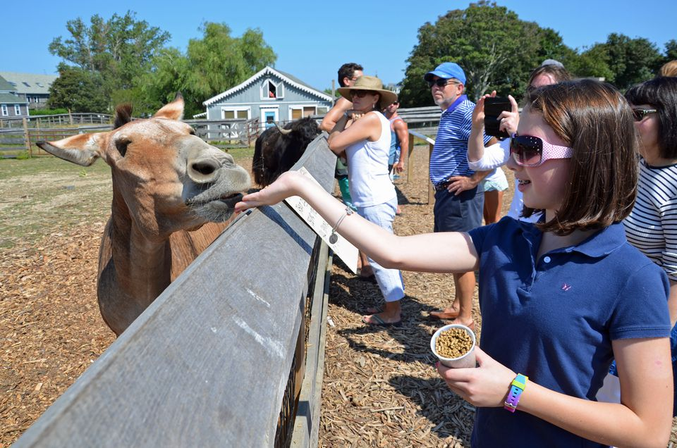 10 Best Things To Do On Block Island