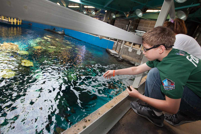 Behind the Scenes Tour at the Aquarium of the Pacific
