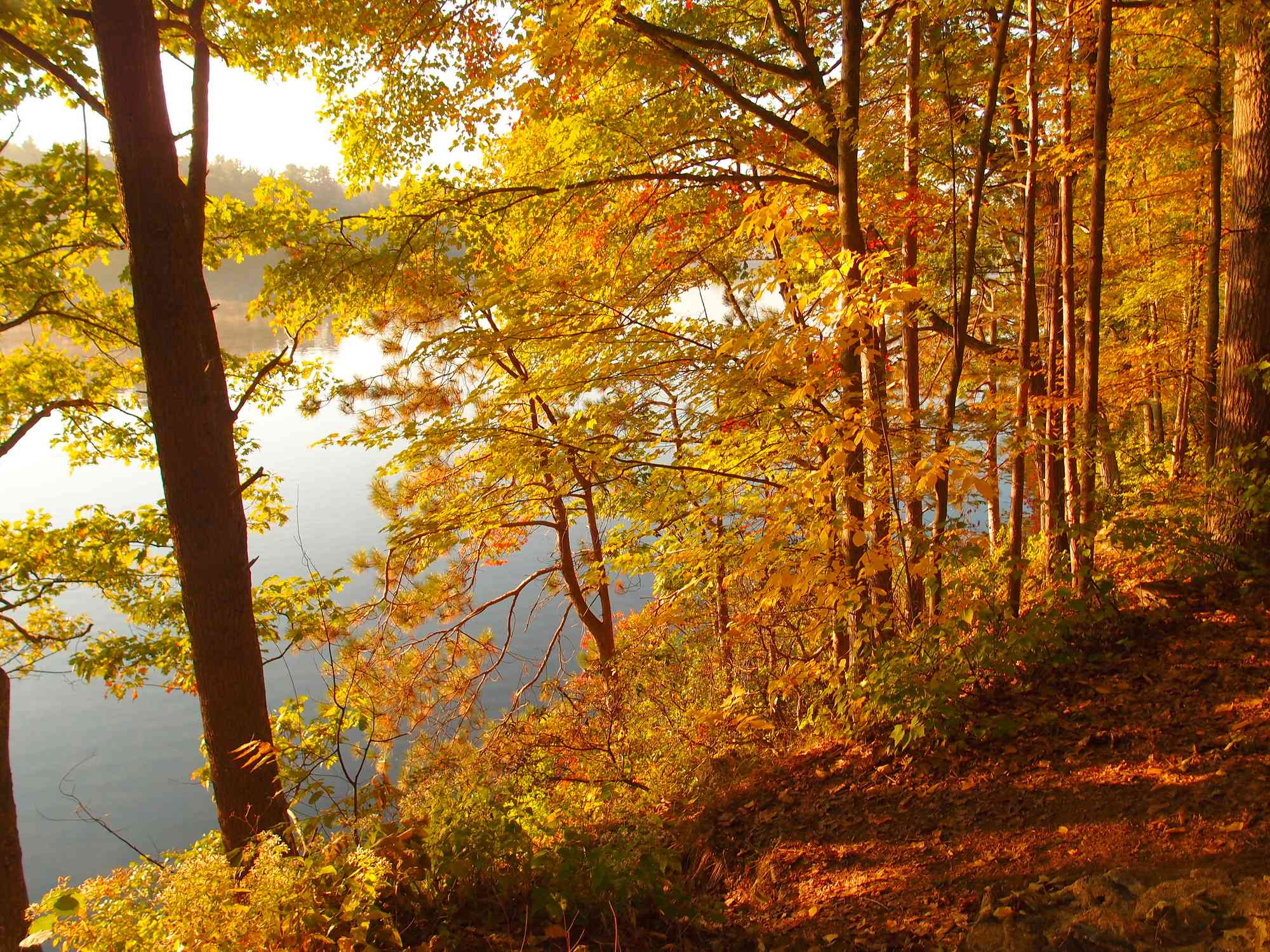 View of a lake with fall colors in Sturbridge, Massachusetts
