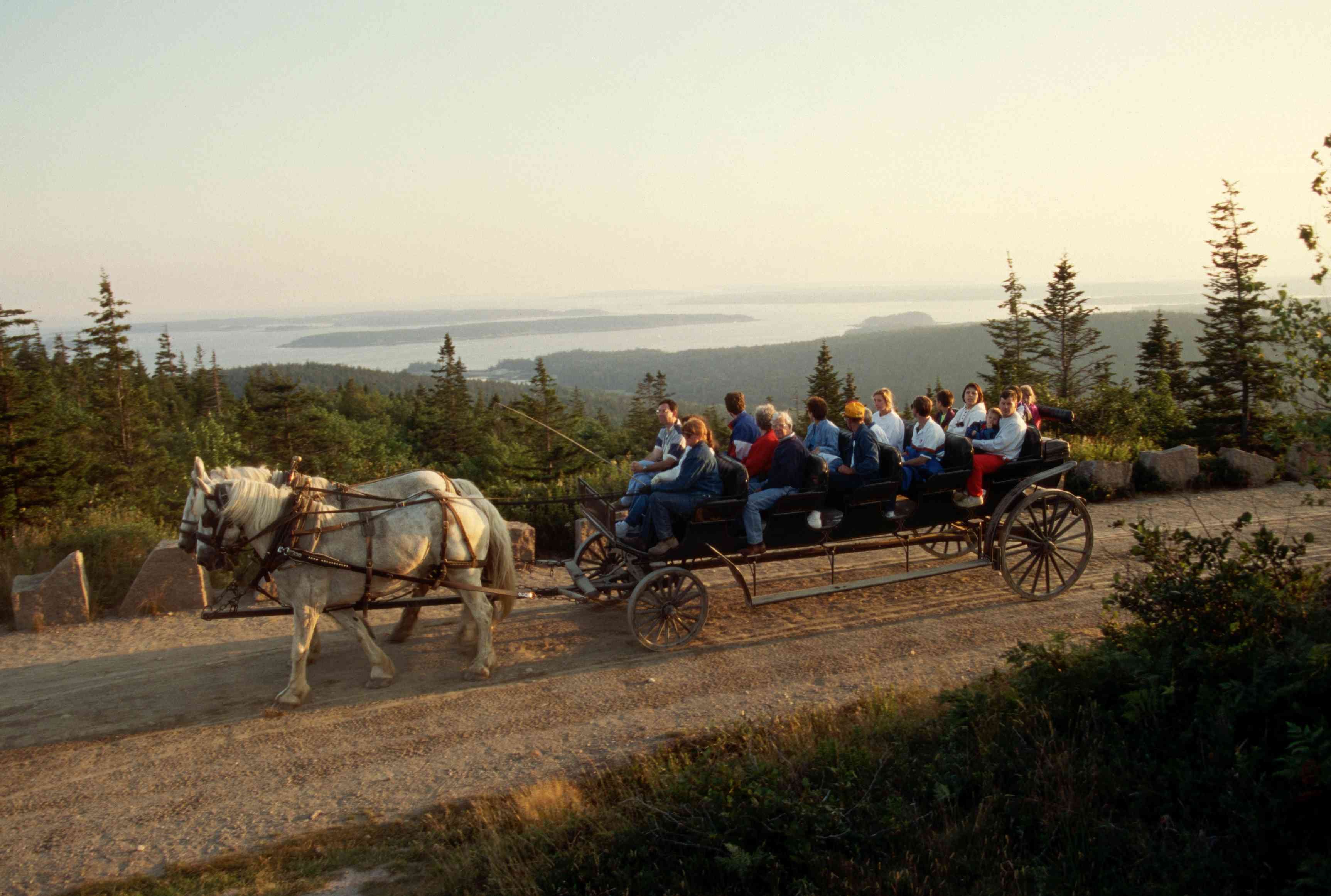 Horse-drawn Wagon Tour in Acadia National Park