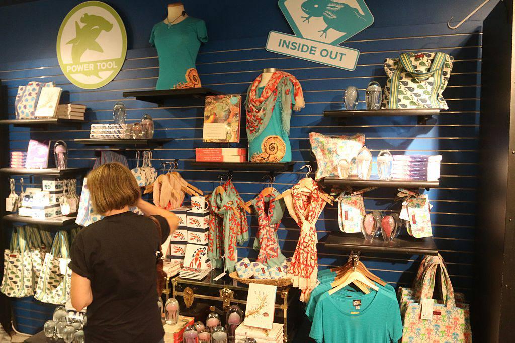 Gift Shop at Museum of Natural History