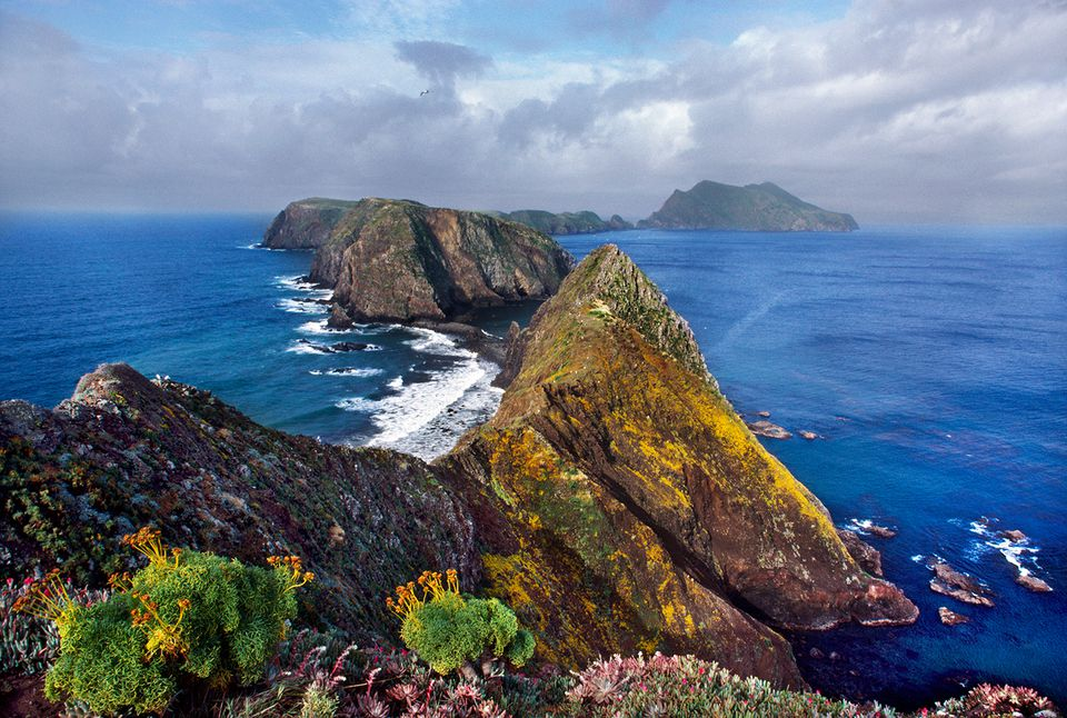 Anacapa Island, Channel Islands National Park, California, USA