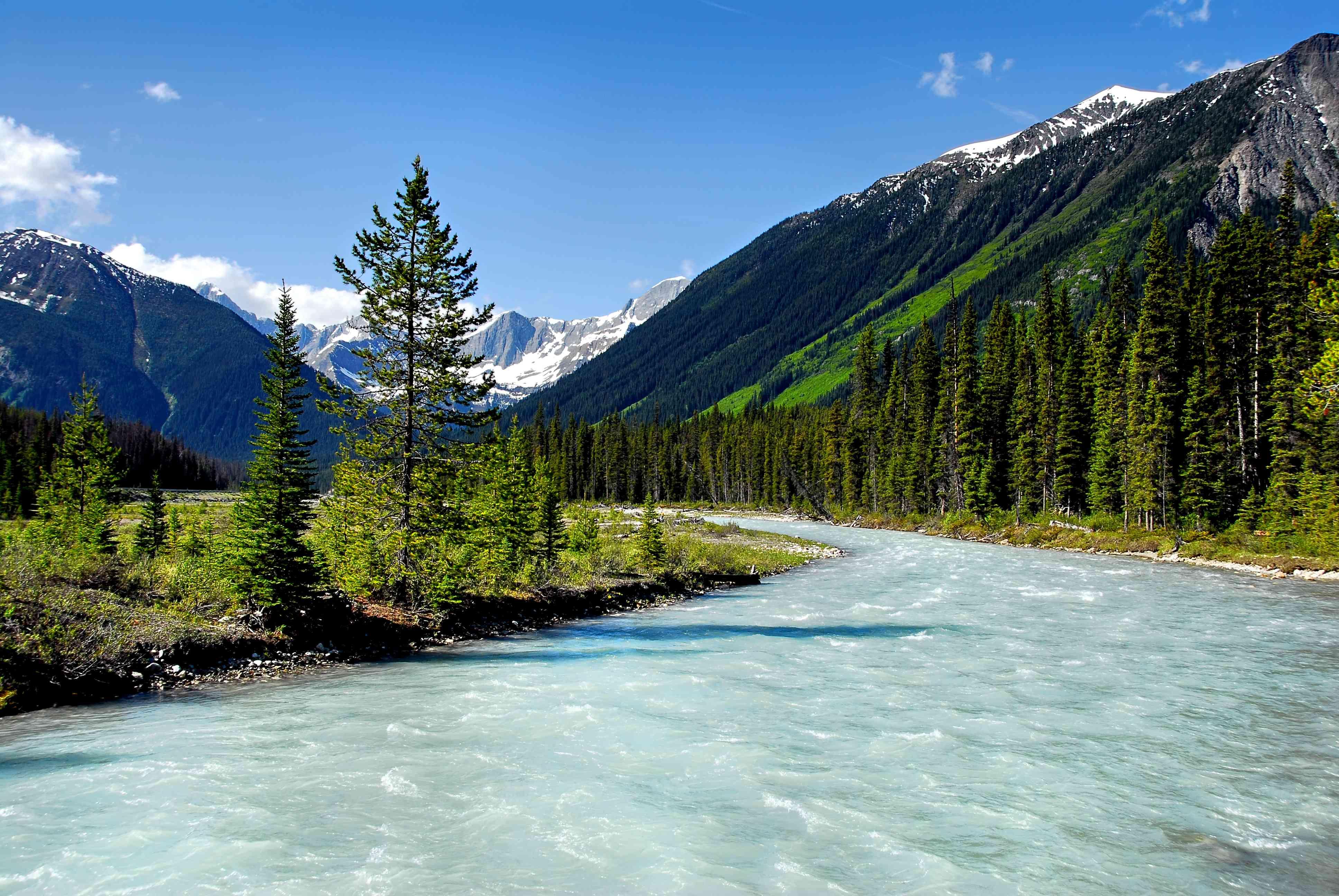 Vermilion River in Kootenay national Park, BC,Canada.