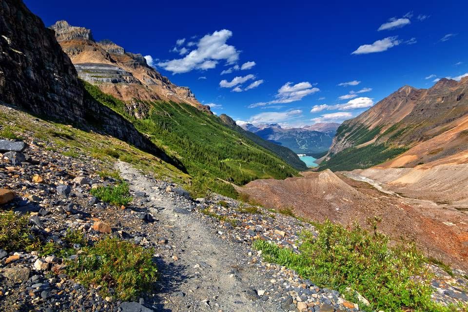 Hiking Trail above Lake Louise