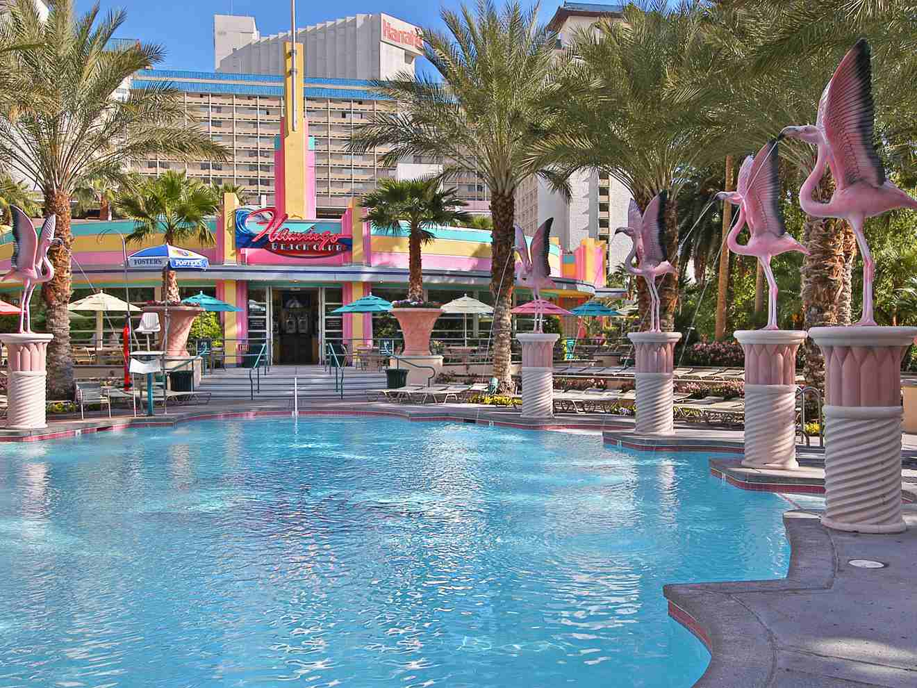 A Guide to the Swimming Pools of the Flamingo Las Vegas