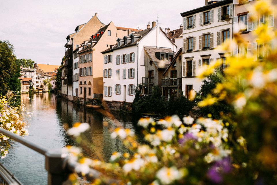 German-style houses in Strasbourg as seen from the river through the flowers