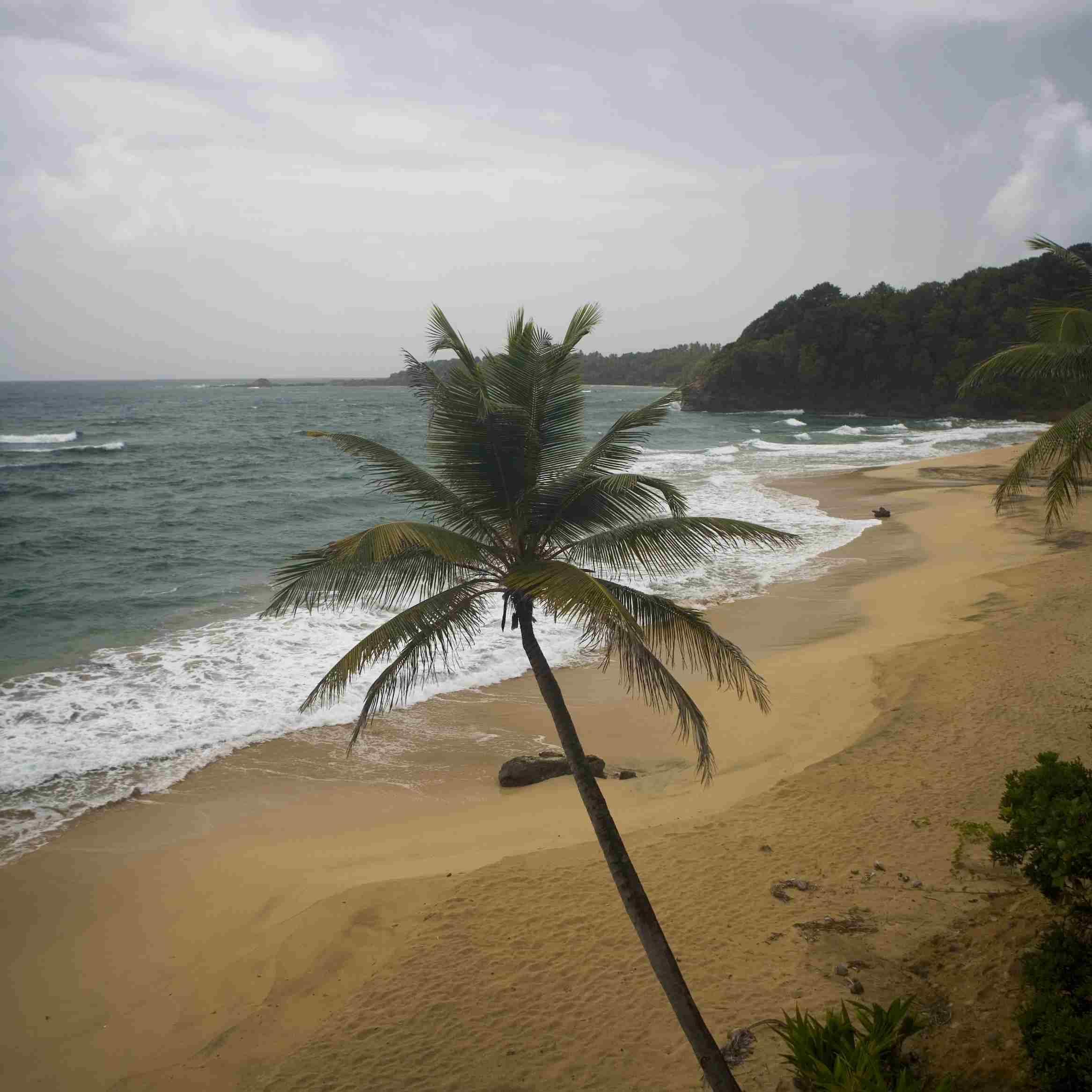 Hampstead-Beach-in-Dominica-0713.jpg