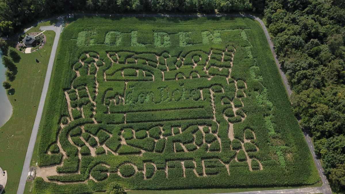 Great Godfrey Maze