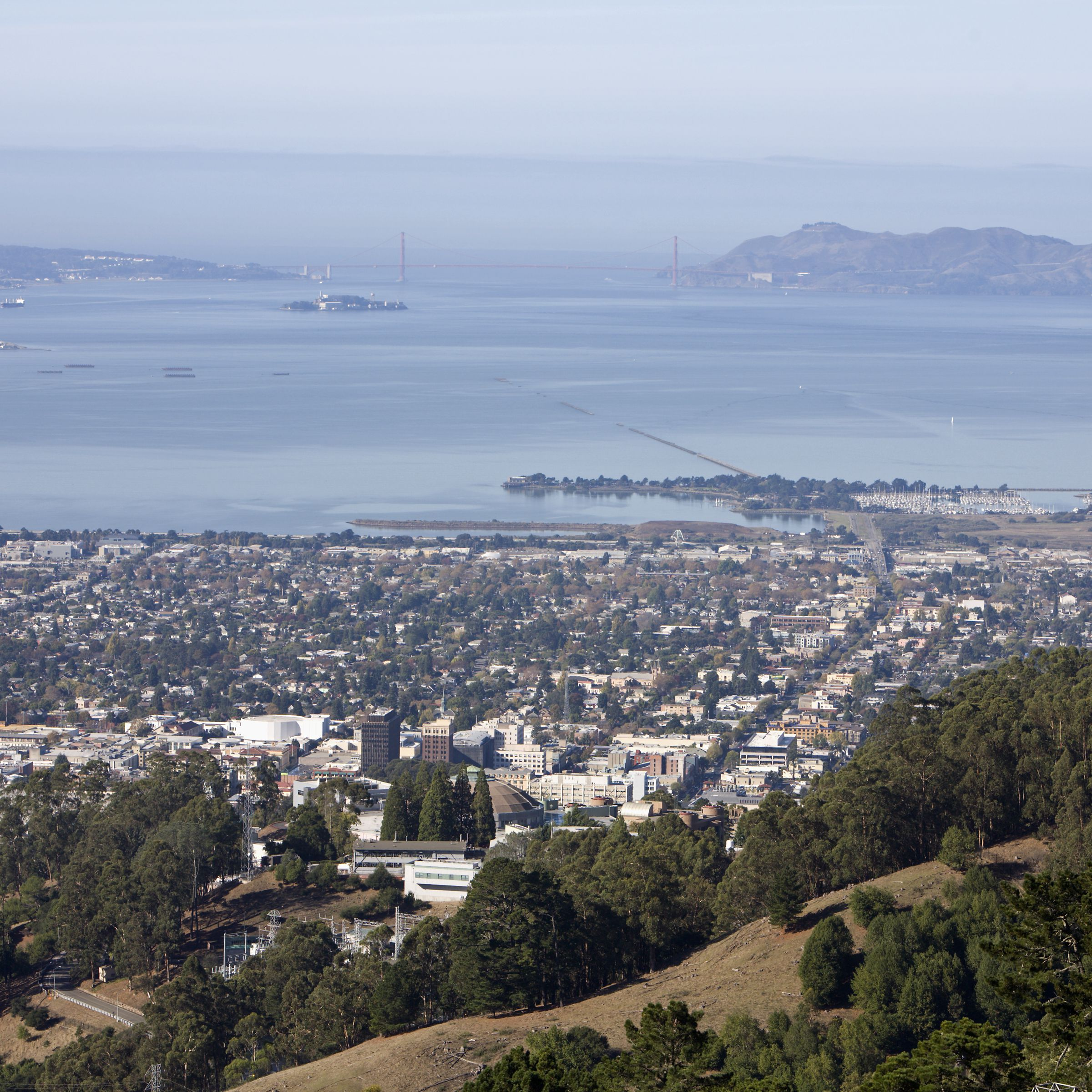 The Top 12 Things to Do in Berkeley, California