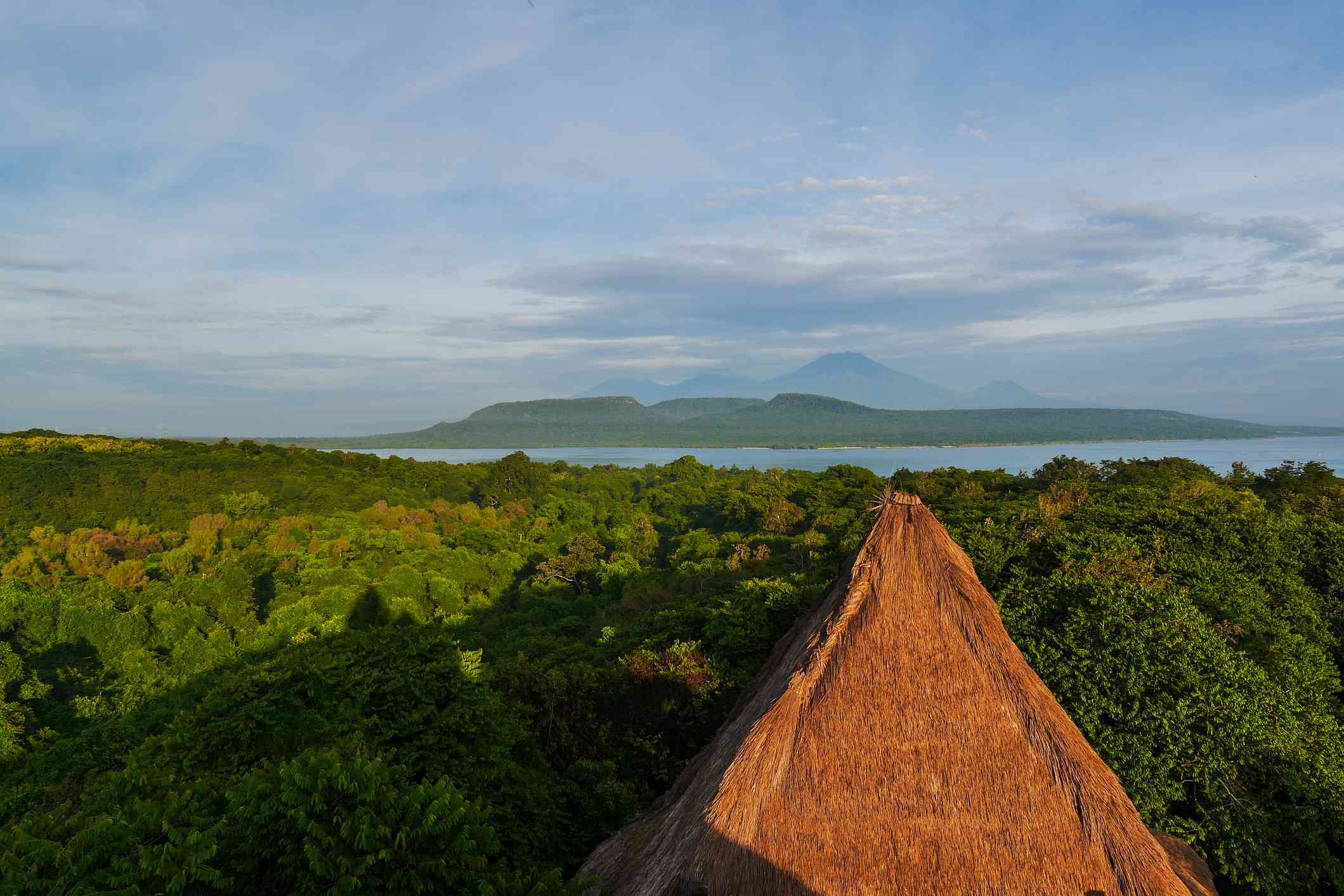 aerial view of West Bali National Park.