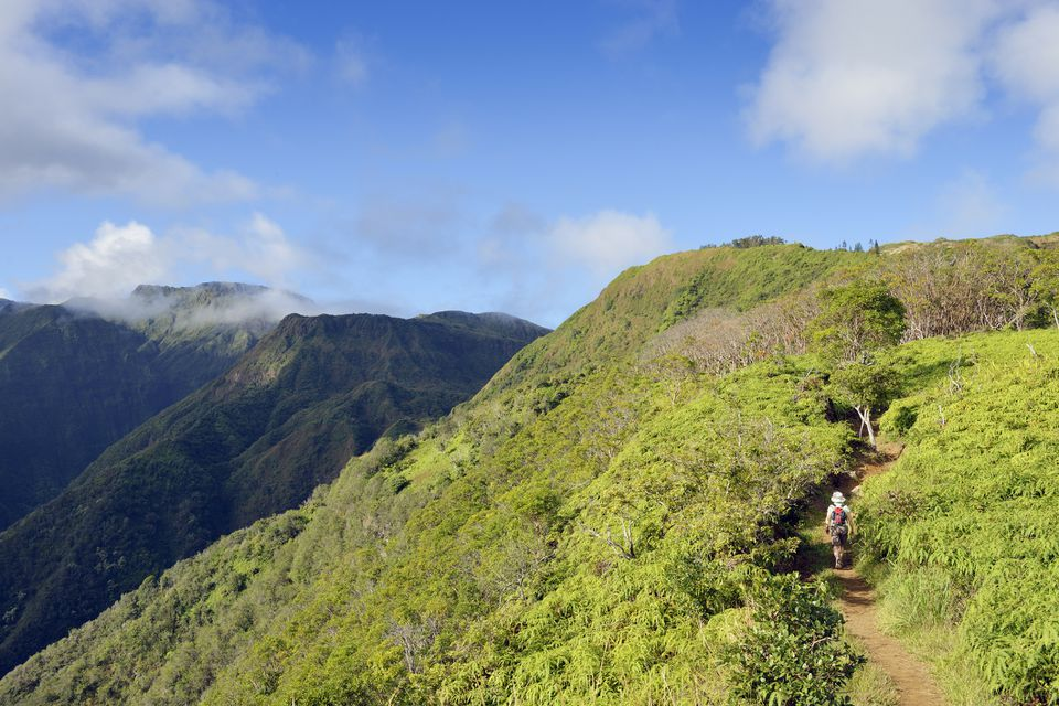 Hawaii, Maui, woman hiking on Waihee Ridge Trail