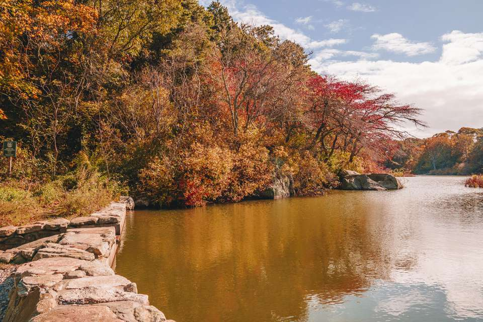Photo of a lake surrounded by trees with bright orange and red leaves