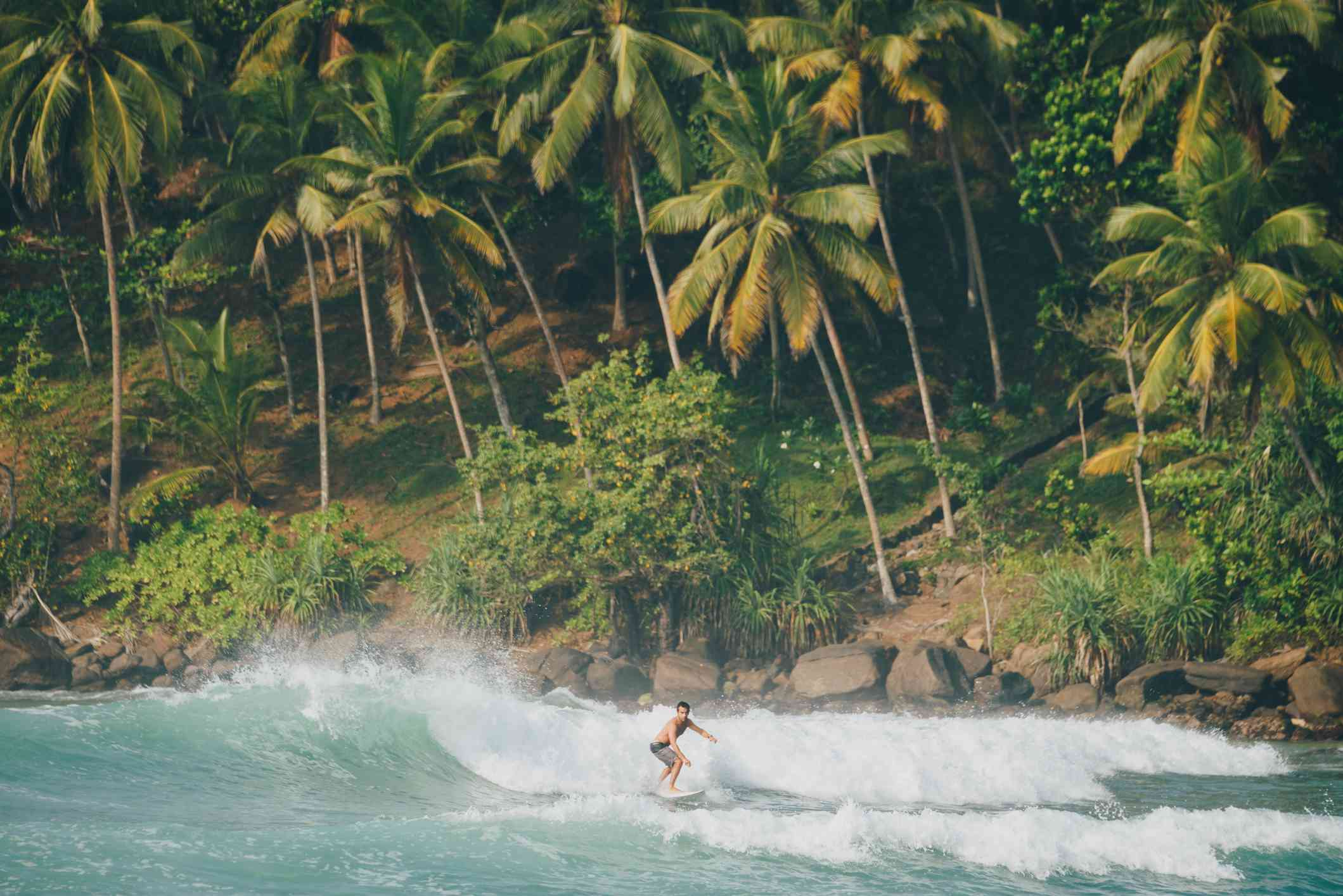 Surfers at Mirissa beach in Sri Lanka, view of a surfer with palm trees in the background