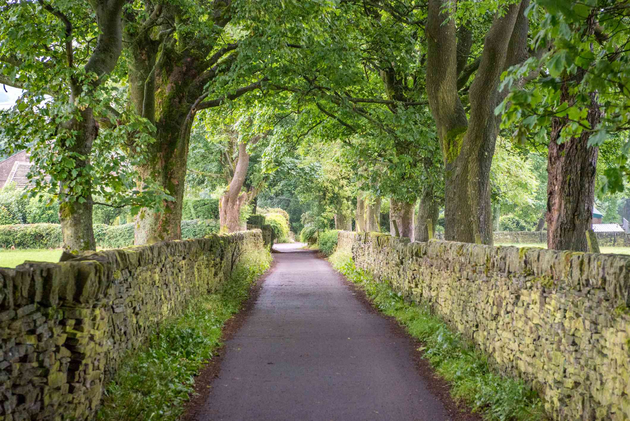 Sidewalk lined by stone wall and trees in Haworth, West Yorkshire, England