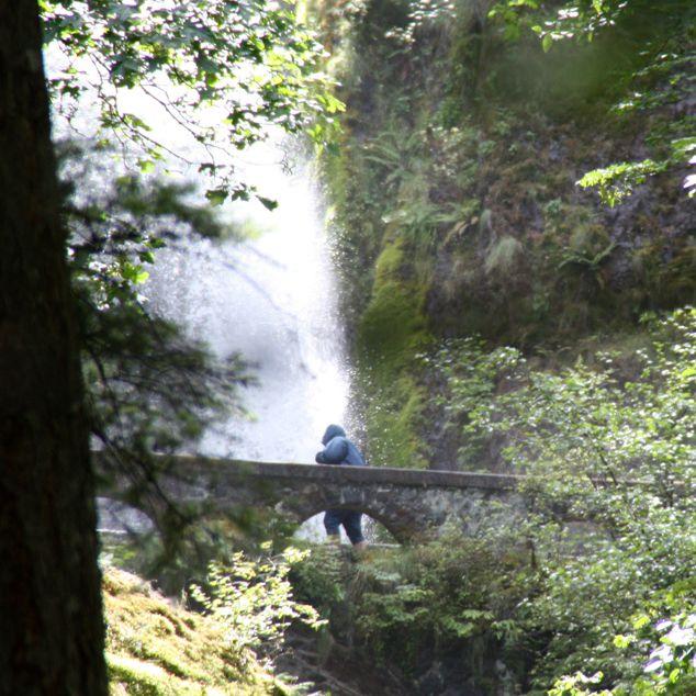 View of Lower Wahkeena Falls