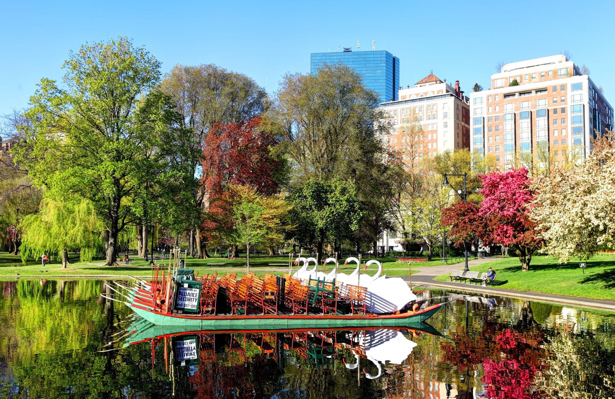 Boston Public Garden The Complete Guide