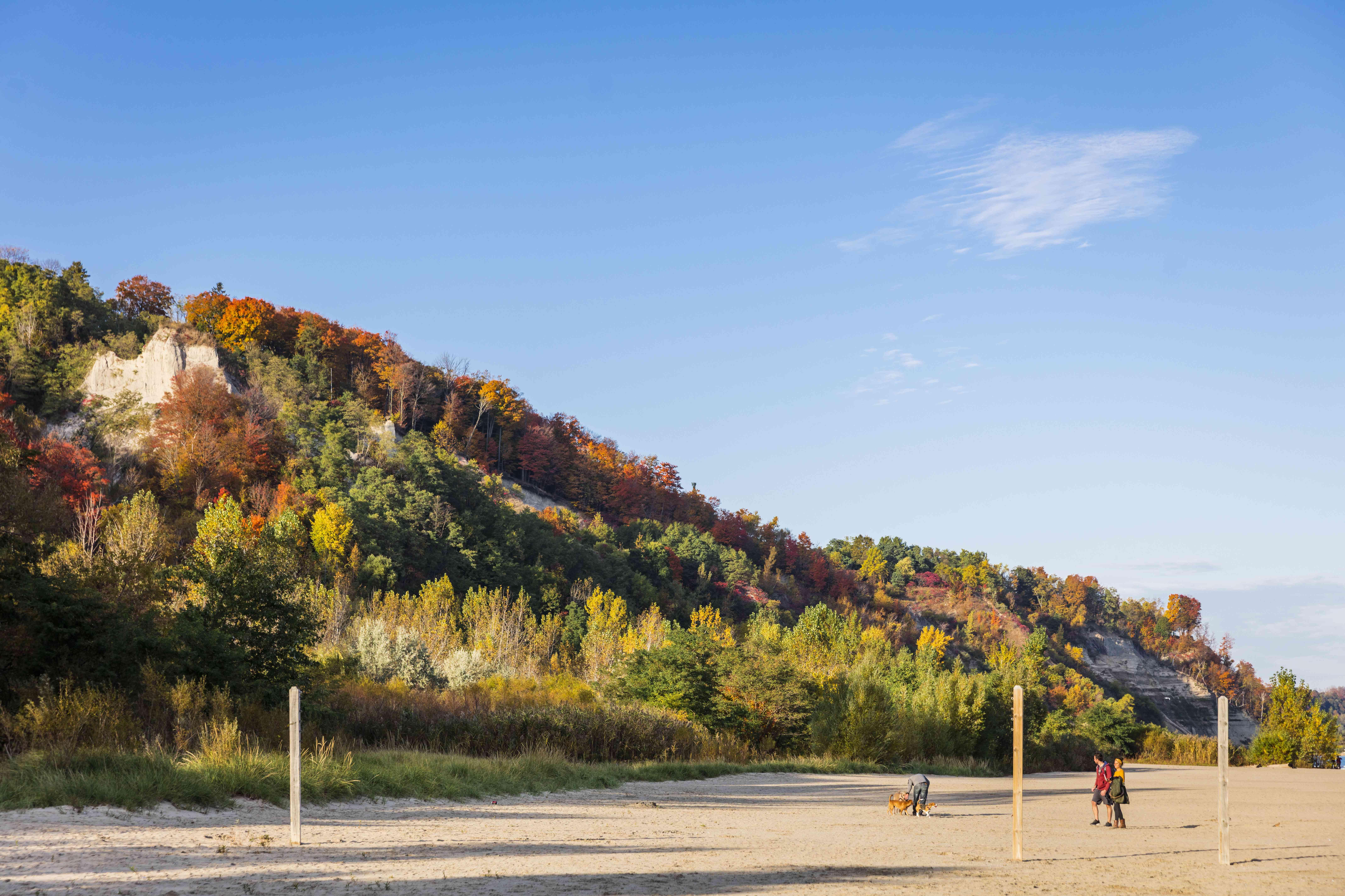 Bluffers Park fall foliage in Toronto