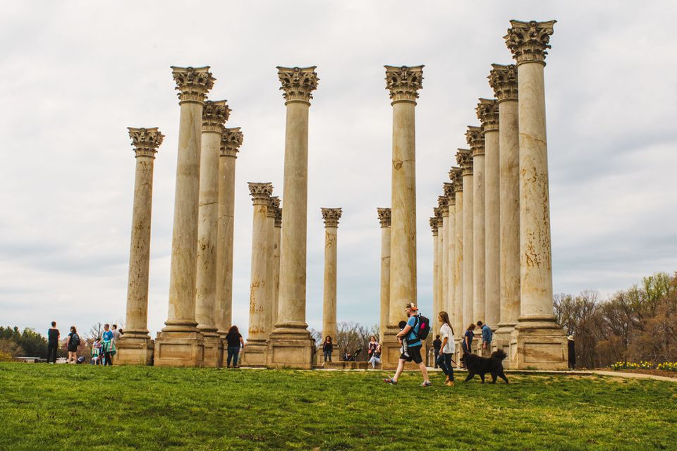 Columns in the National Arboretum