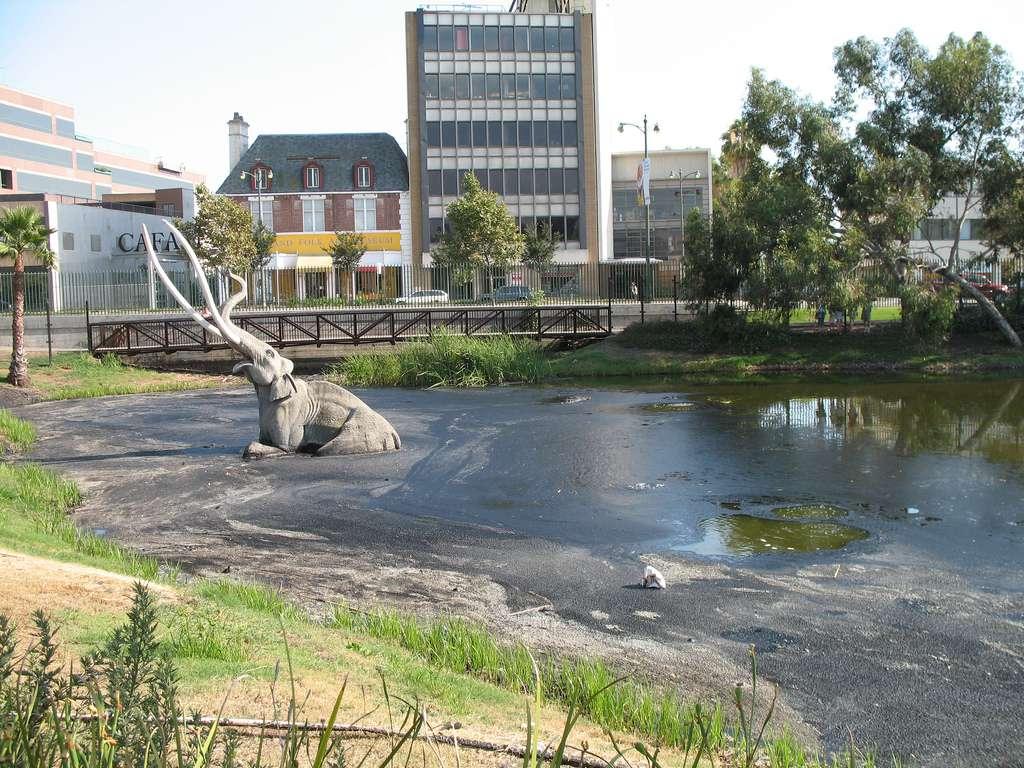Asphalt (Bitumen) Deposits at La Brea Tar Pits
