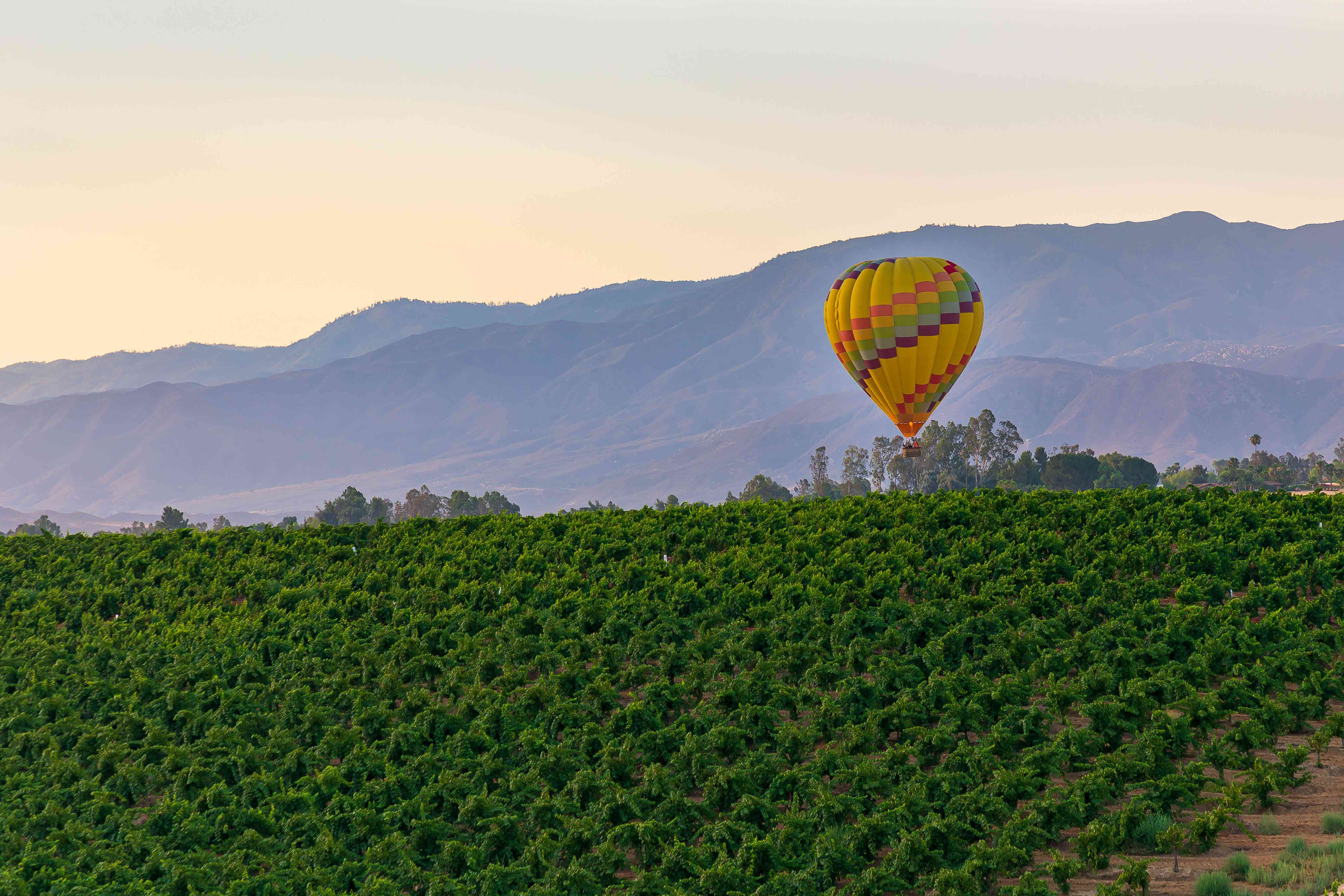 Hot airballoon floating oevr green fields in california