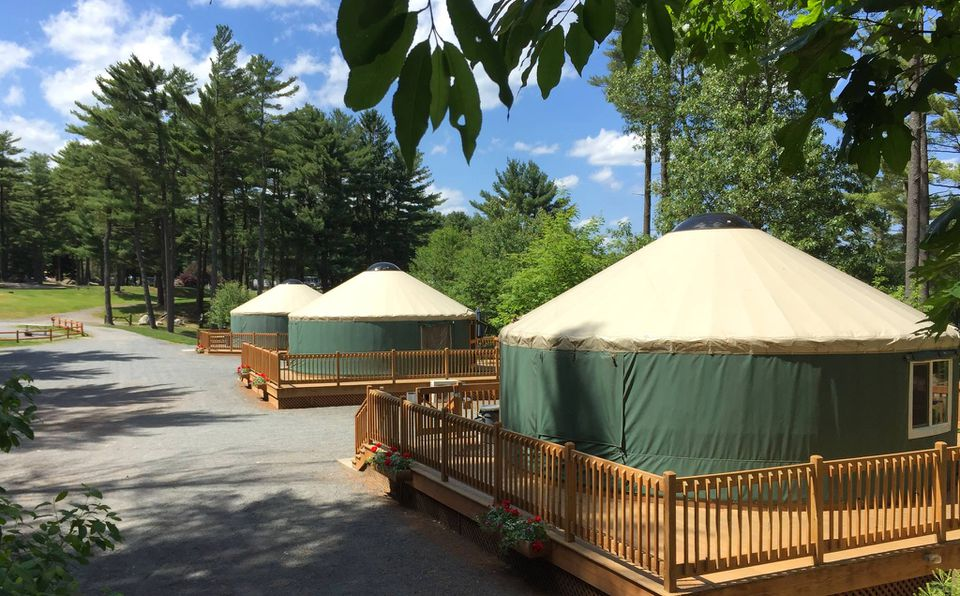 Three green yurts with cream colored roof in a row. Each Yurt is on a large, elevated wooden deck with stairs. There are tall tree to the right of the yurts
