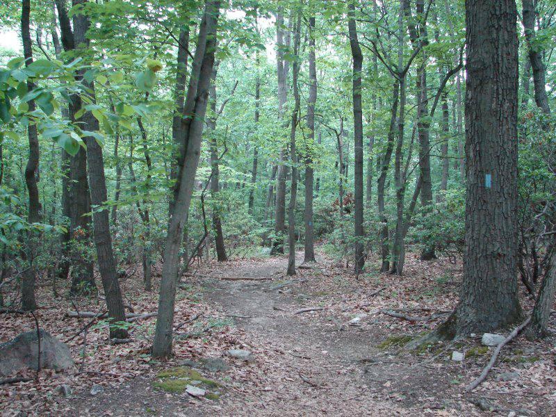Hiking Trail at Sugarloaf Mountain