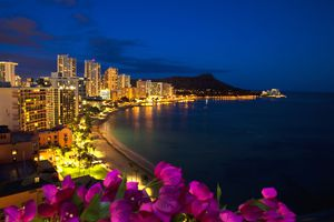 Hawaii, Oahu, Nighttime View Of Waikiki With Flowers In Foreground.