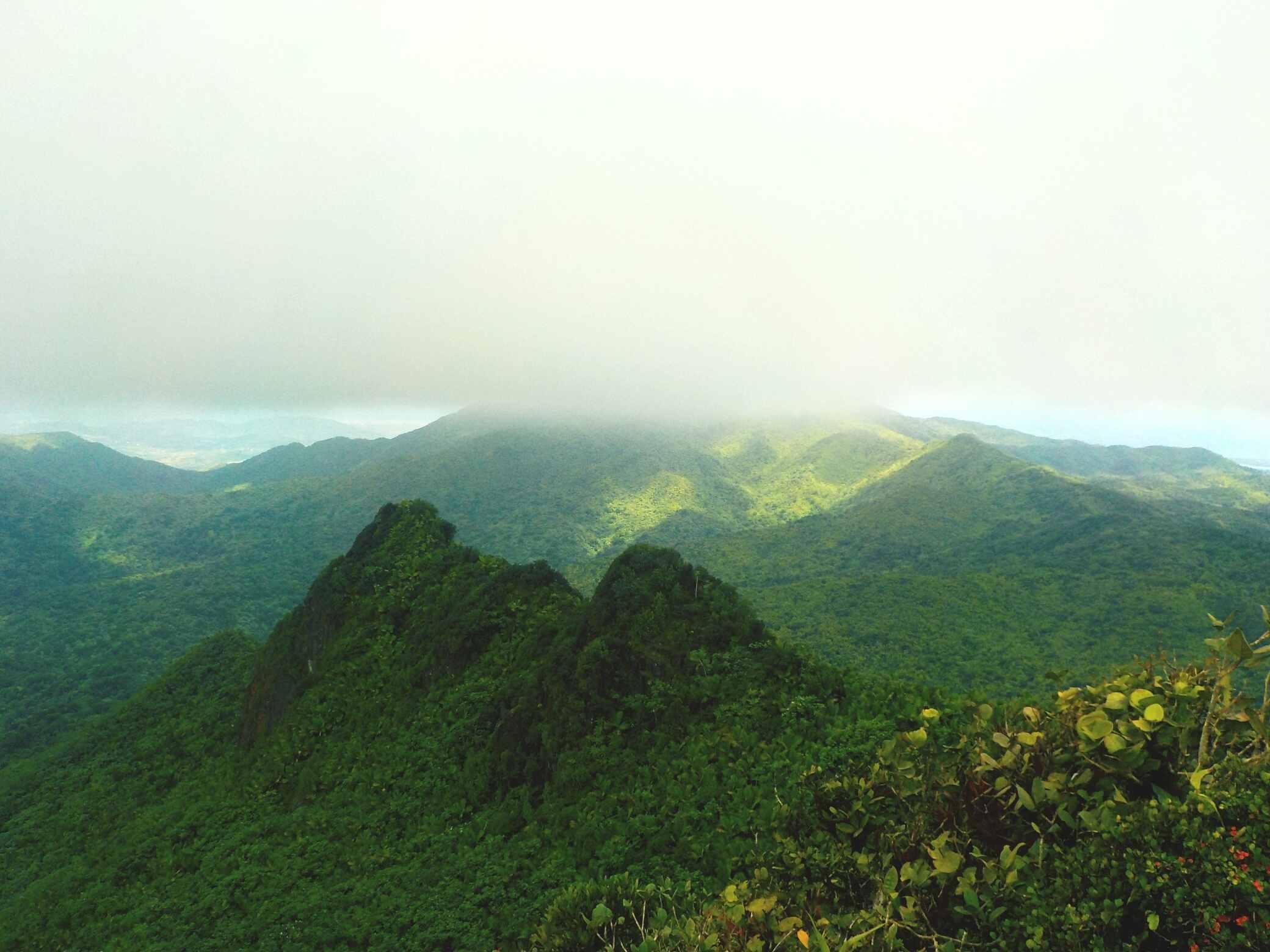 El Yunque national park in Puerto Rico.