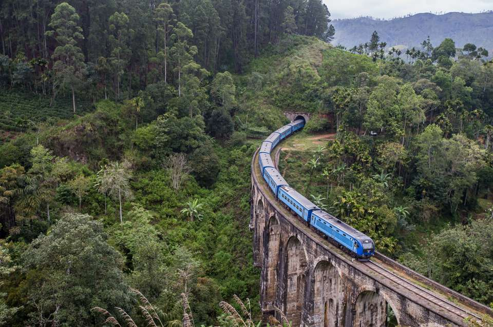 A train in the jungle of Sri Lanka