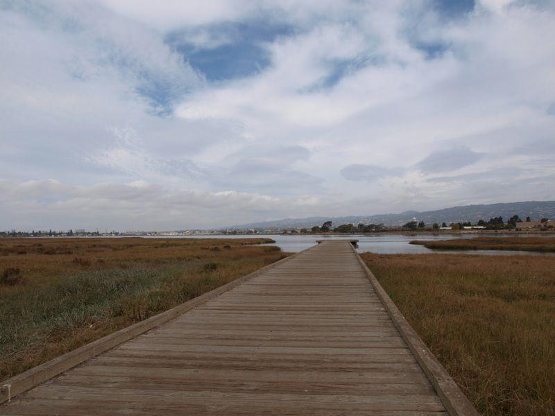 Arrowhead Marsh at MLK Shoreline
