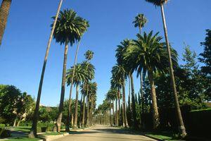 Beverly Hills, LA, CA