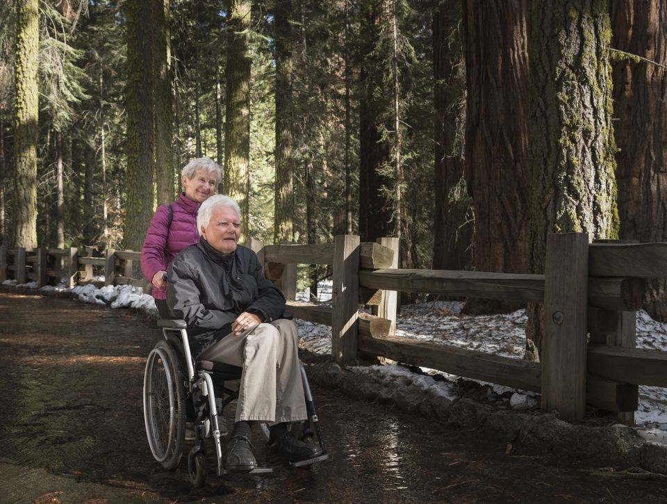 Senior woman pushing man in wheelchair through forest at Sequoia National Park, California, USA