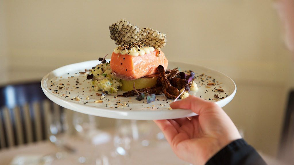 hand londin a white plate with intricately plated salmon