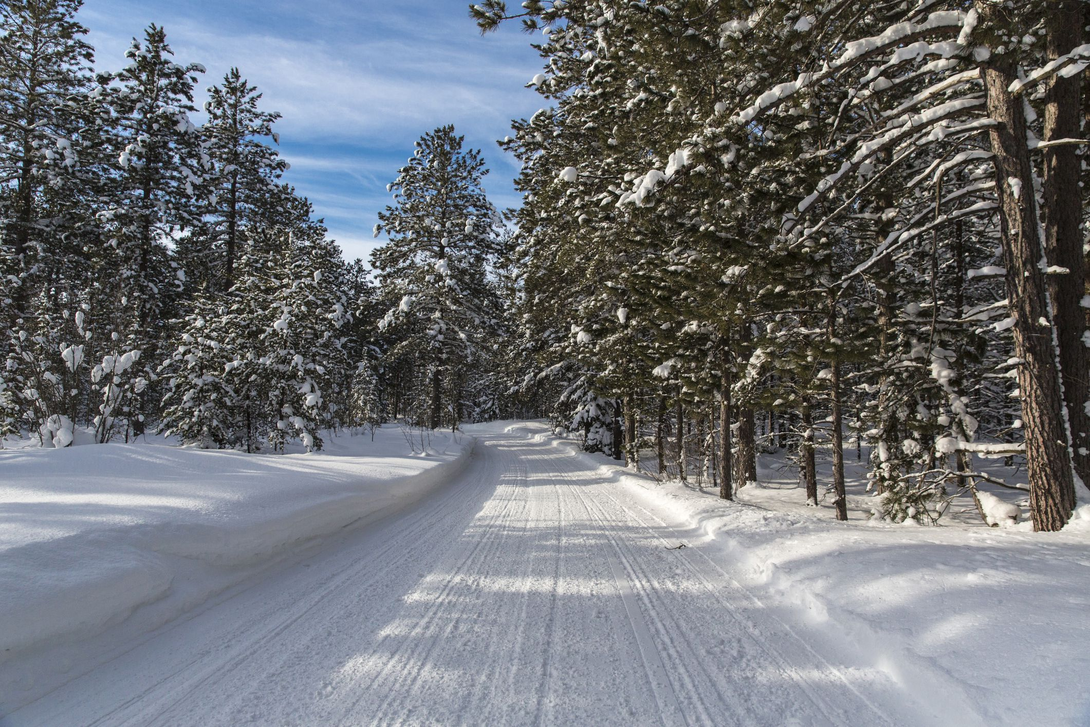 USA, Michigan, Paradise, View along snowy forest road