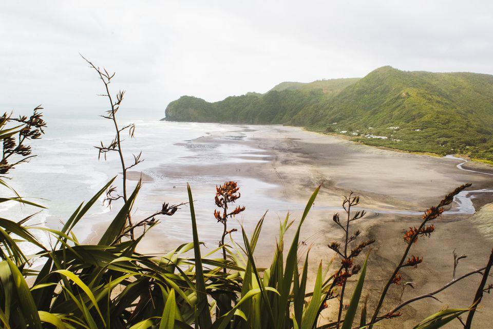 Playas de arena negra de Piha
