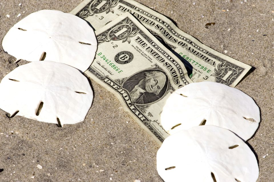 Sand dollars alongside paper dollars on a sandy beach