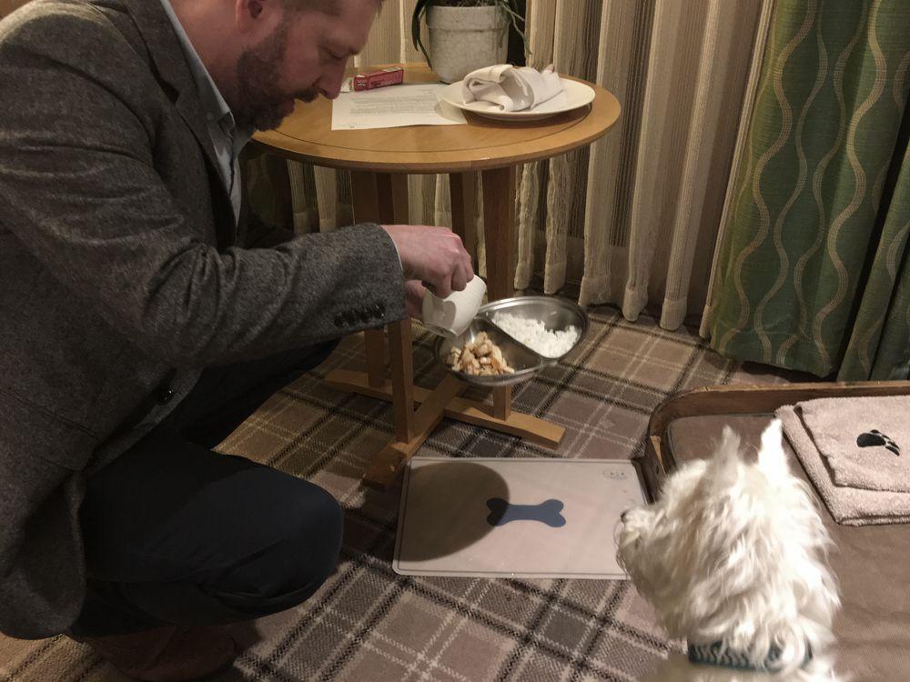 En el Tewkesbury Park Hotel, Lulu recibe el cuidado mimado de las mascotas con una comida preparada por el chef