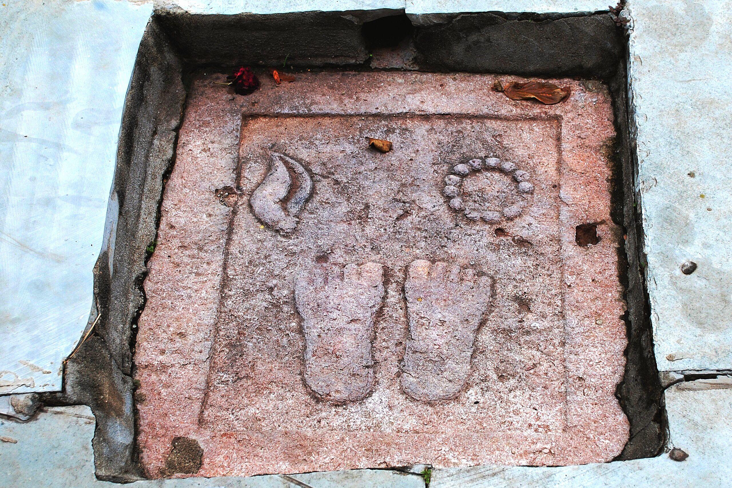 Lord Krishna's feet.