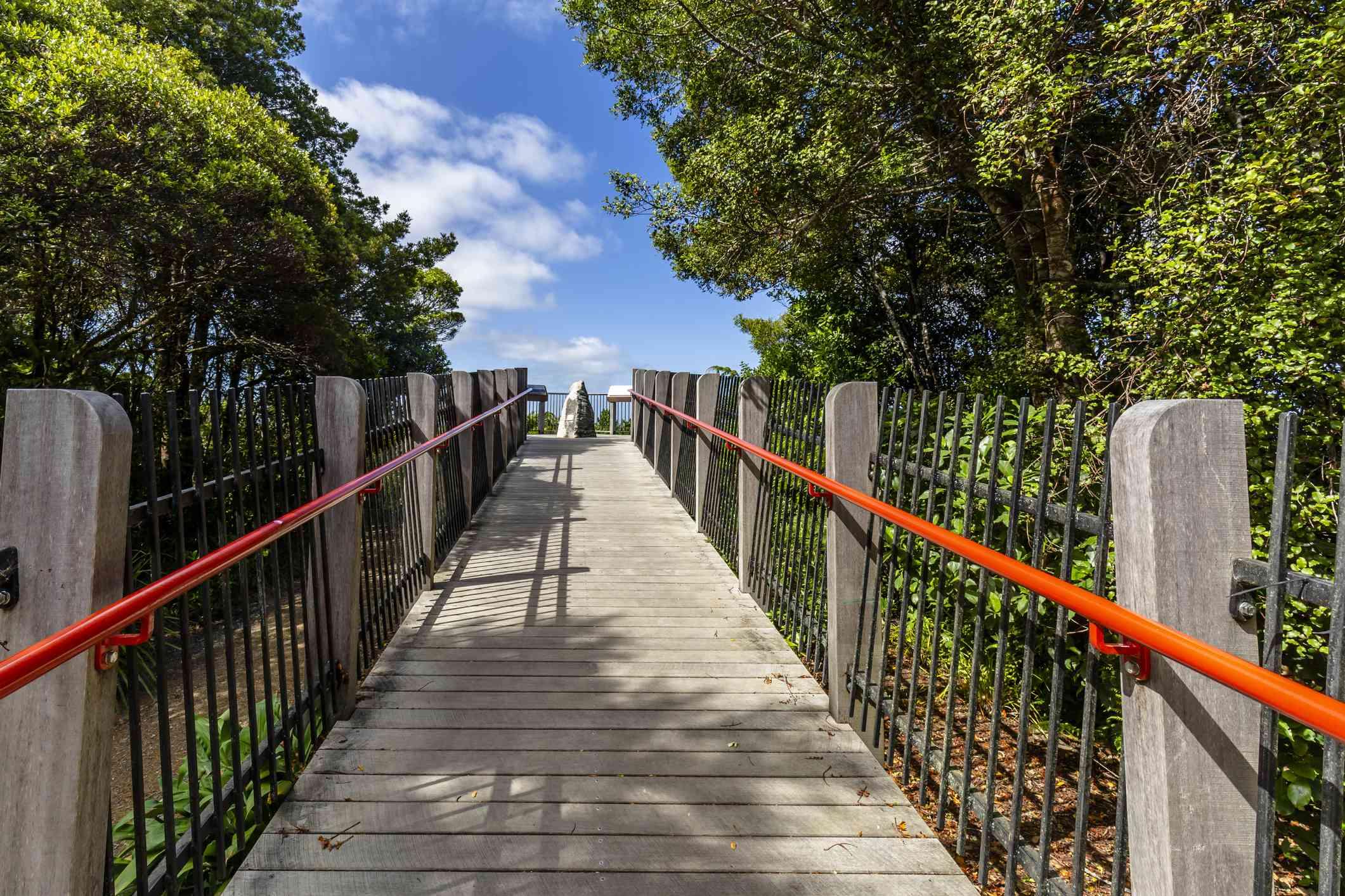 Boardwalk up Mt. Parihaka