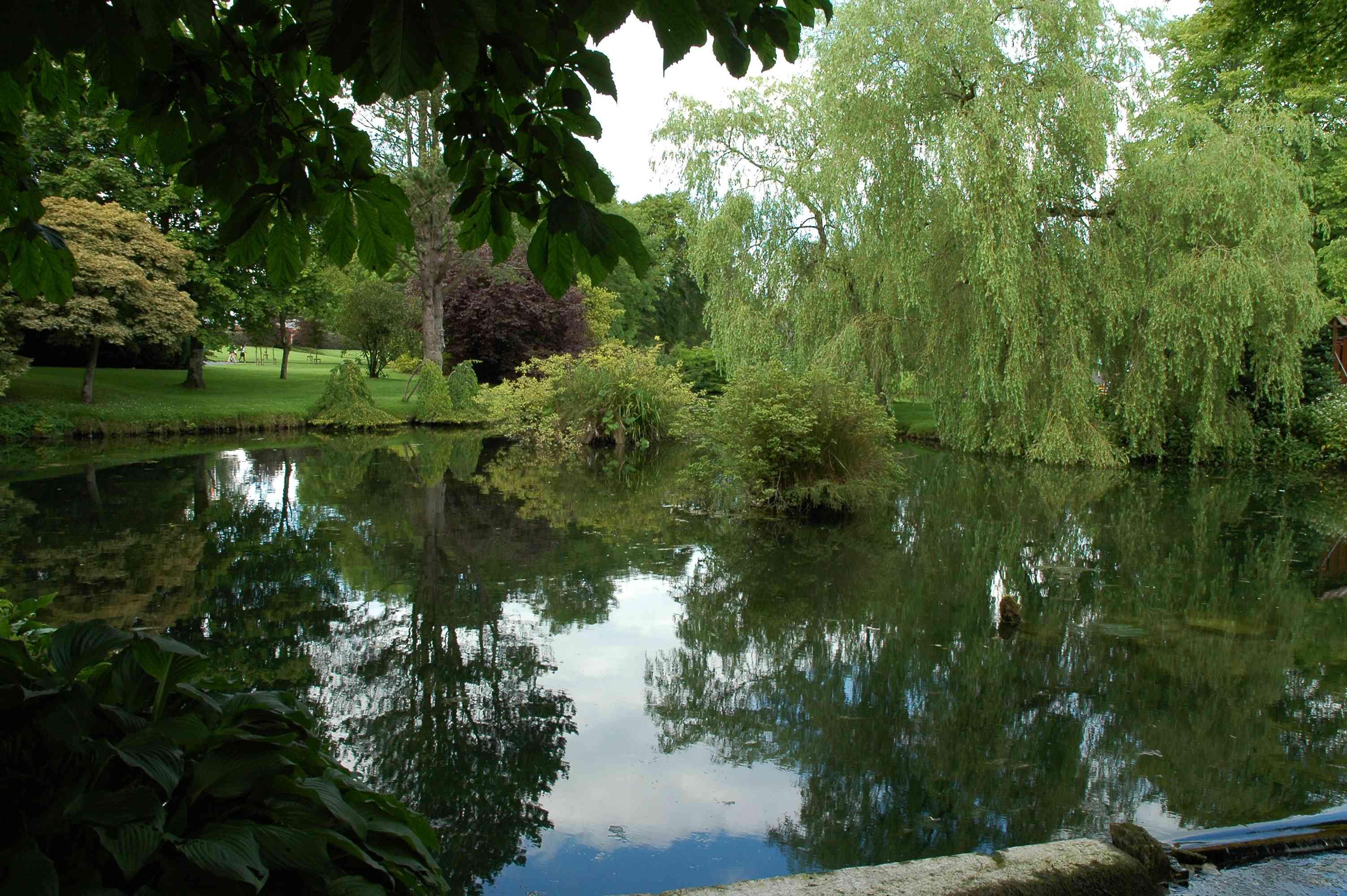 El Stud Nacional Irlandés y los Jardines Japoneses