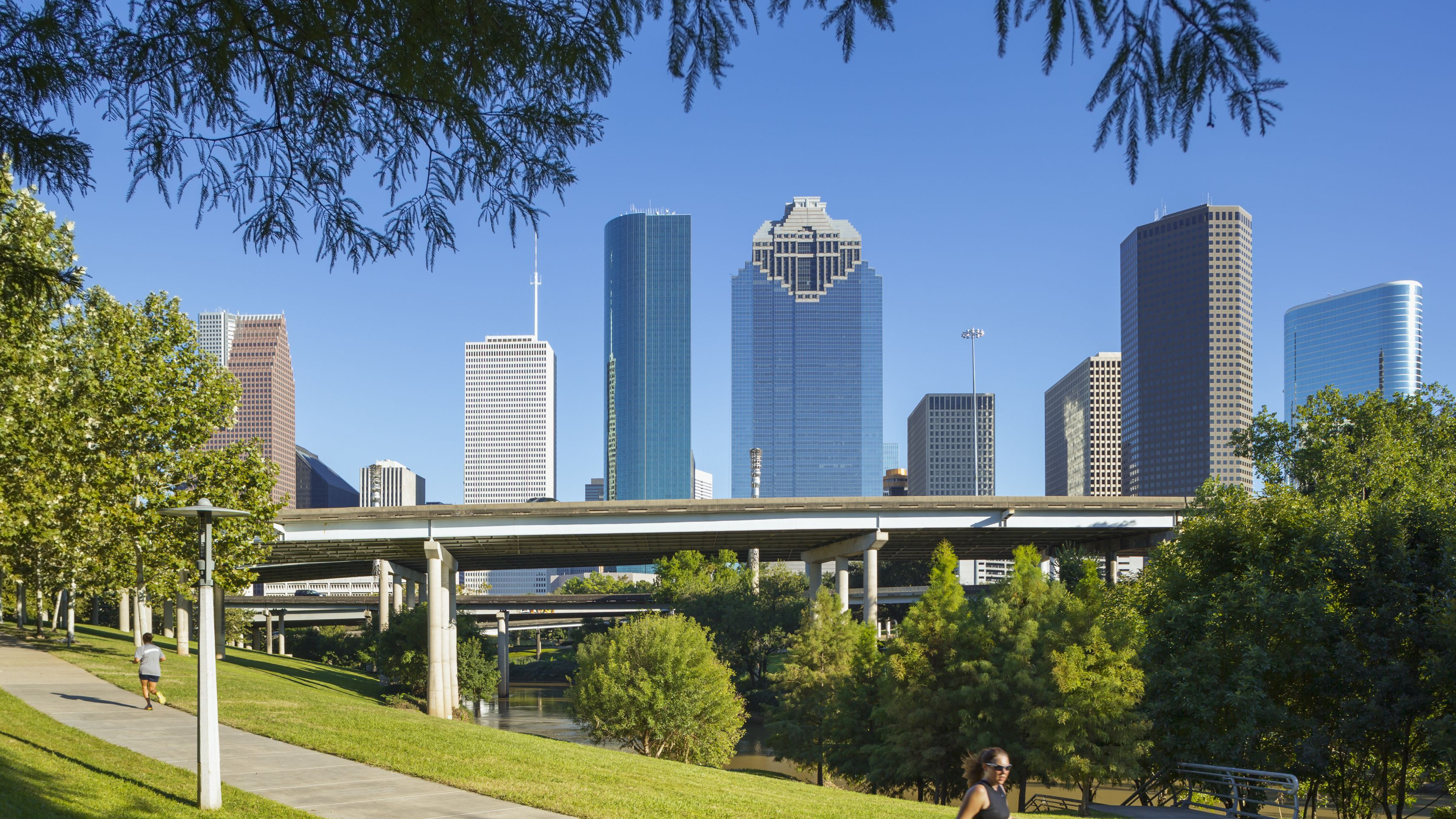 20 Best Attractions and Things To Do in Houston, Texas