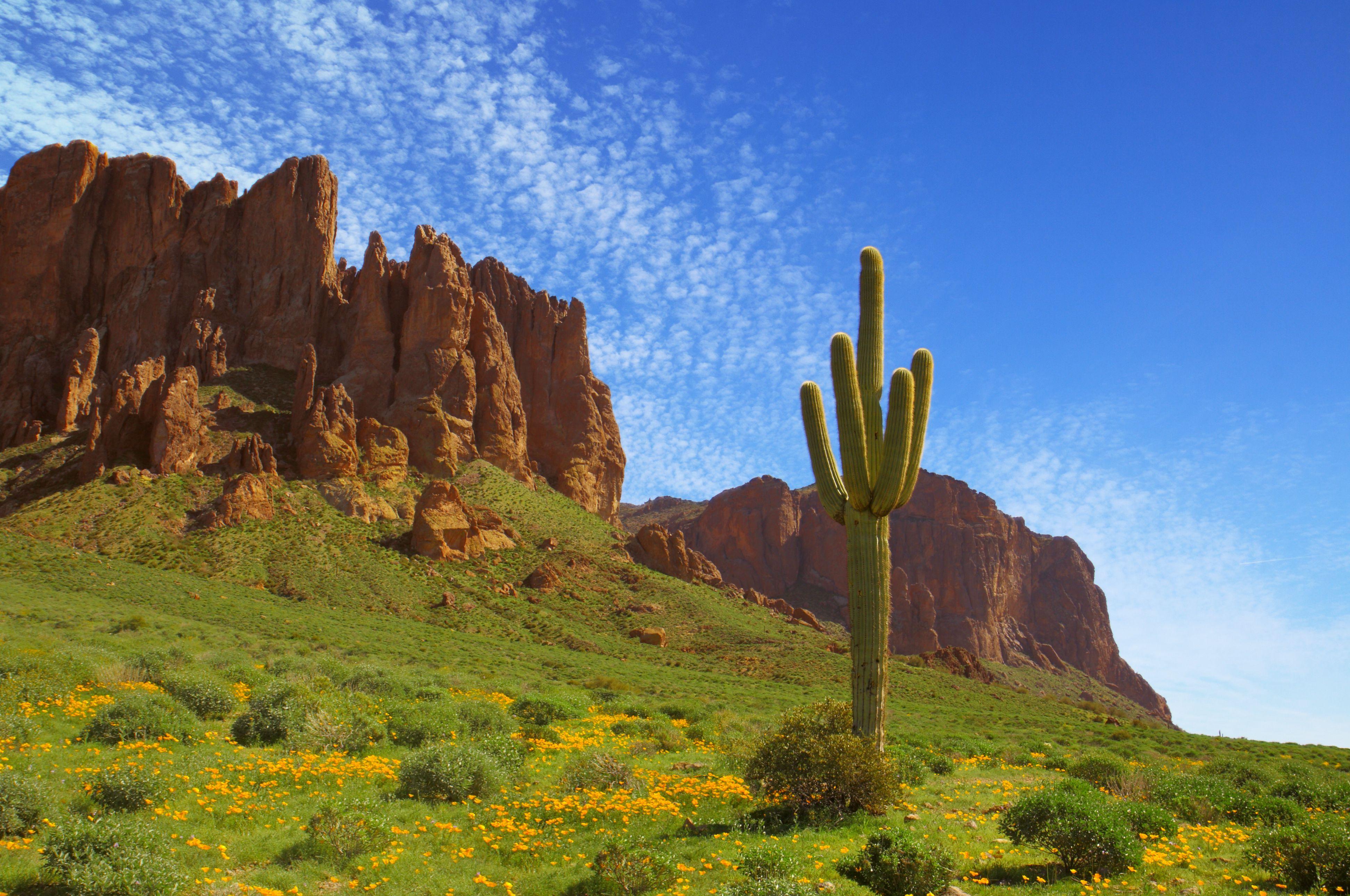 Prospector's View at Phoenix, Arizona