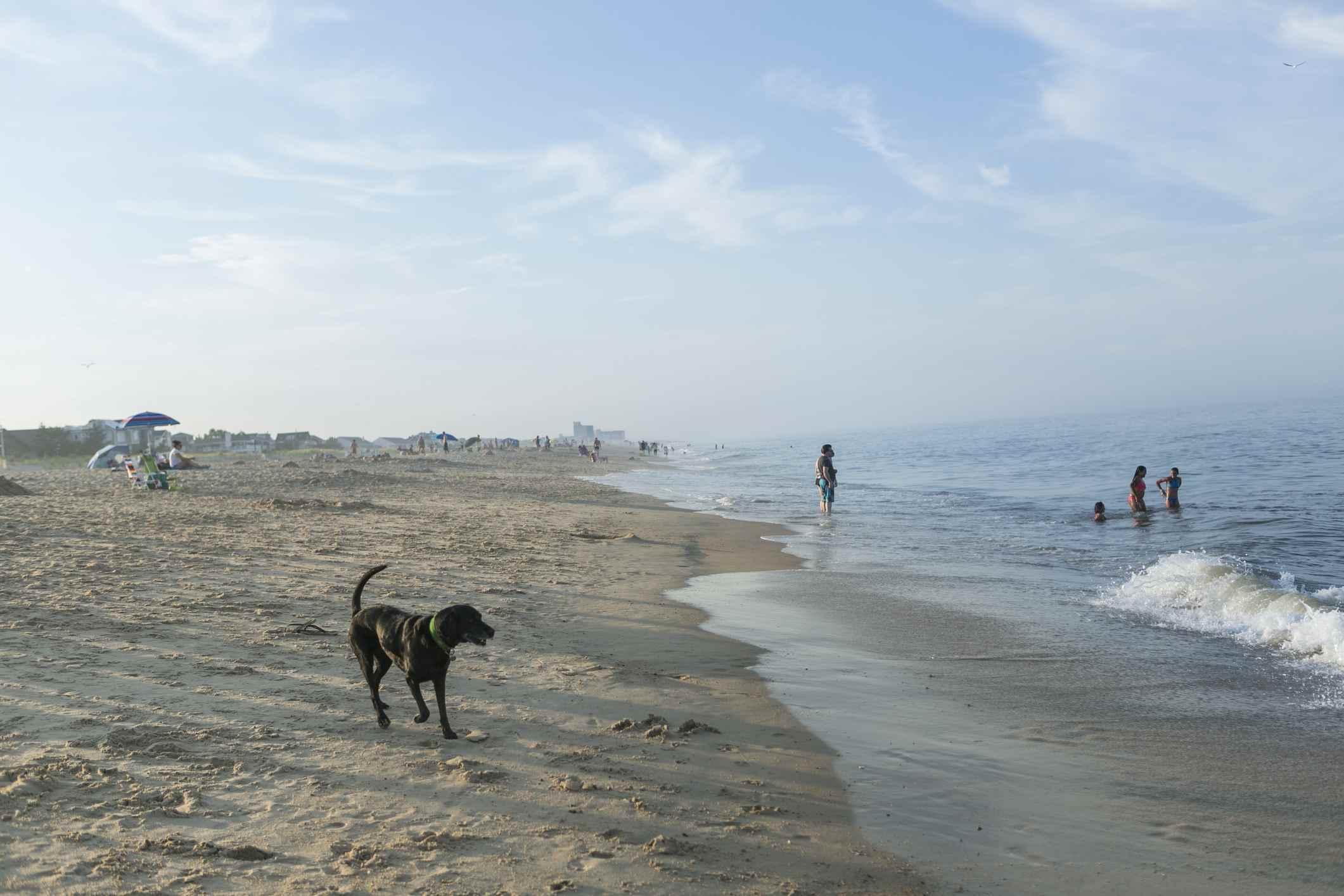 Dewey Beach Delaware in late afternoon
