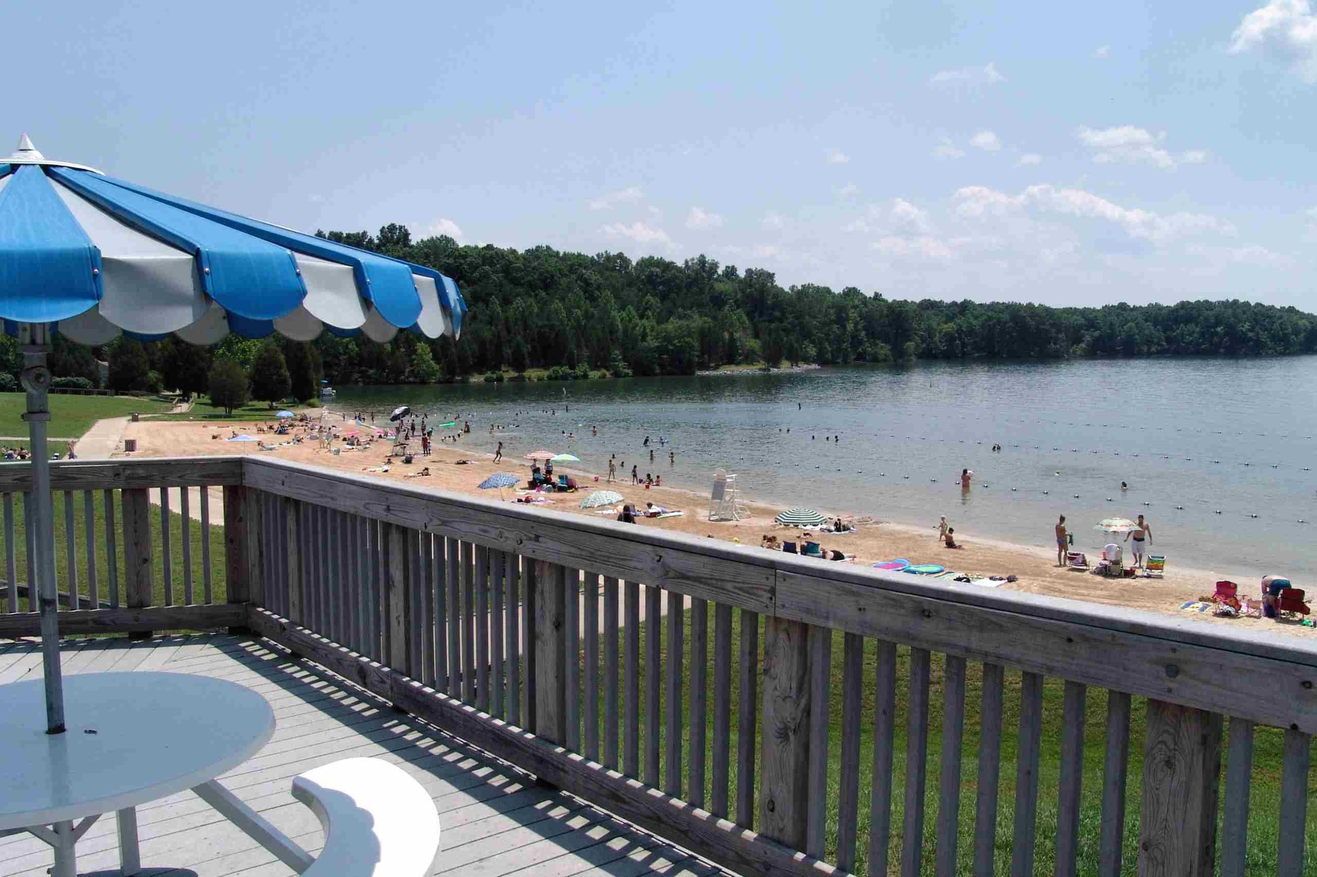 Delaware wild swimming