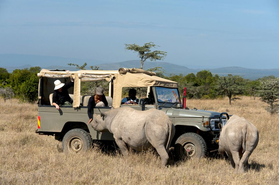 Una introducción a Conservancy Safaris en Kenia