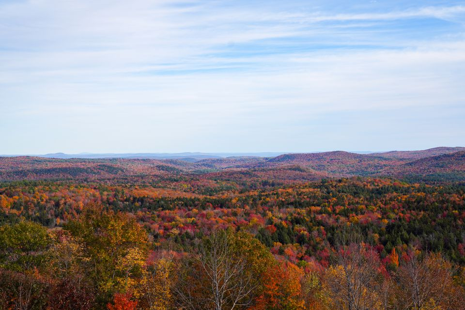 Rolling hills covered in colorful fall leaves in Vermont