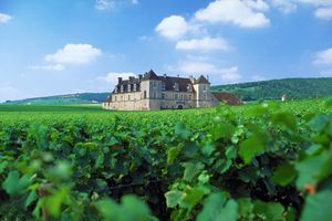 Dijon and Beyond: Travels in Burgundy