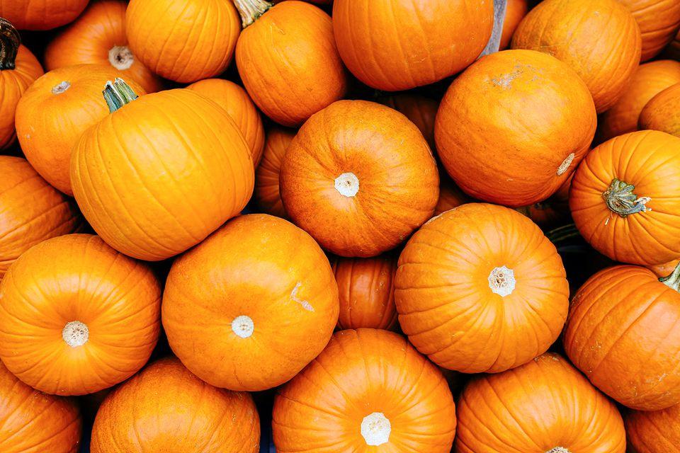 Full frame shot of bright orange pumpkins
